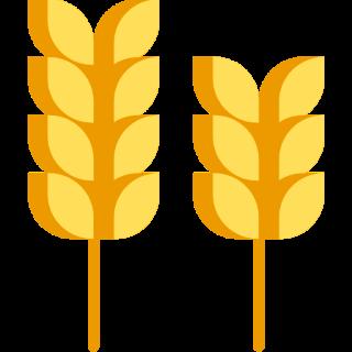 Cena Pšenice